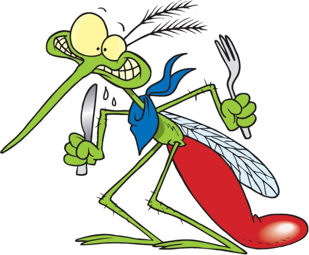 Открытки поздравления, картинки про комаров смешные