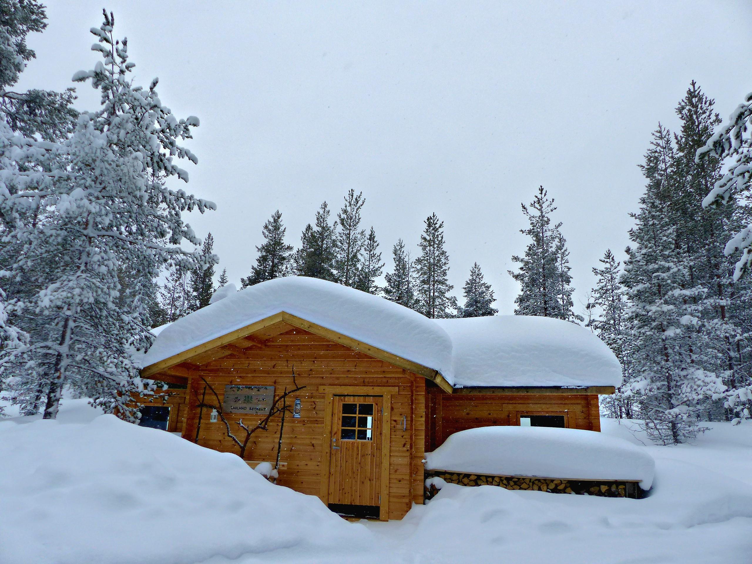 Séjour en Laponie suédoise, dans un camp au coeur de la forêt boréale