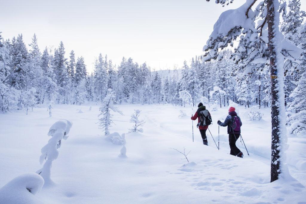 digital detox stay - snowshoes tour