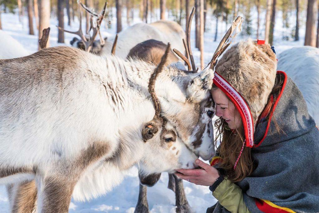 Immersion en Terre Same vacances en Laponie suédoise