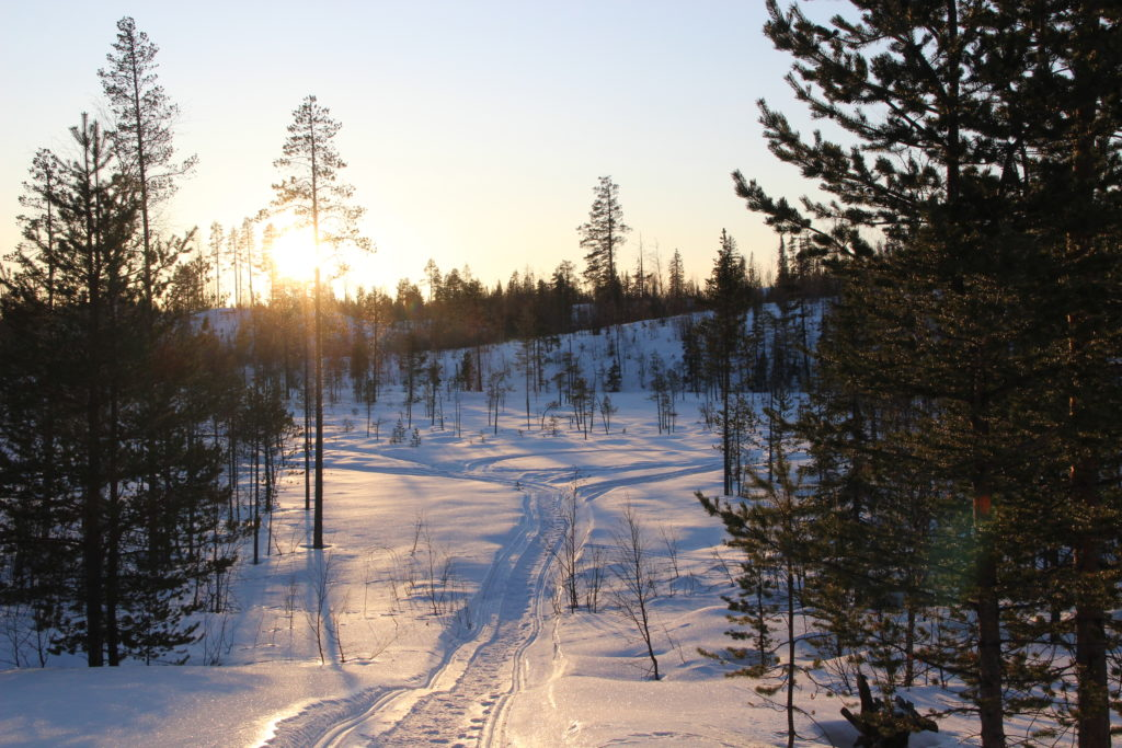 New year's eve in lapland
